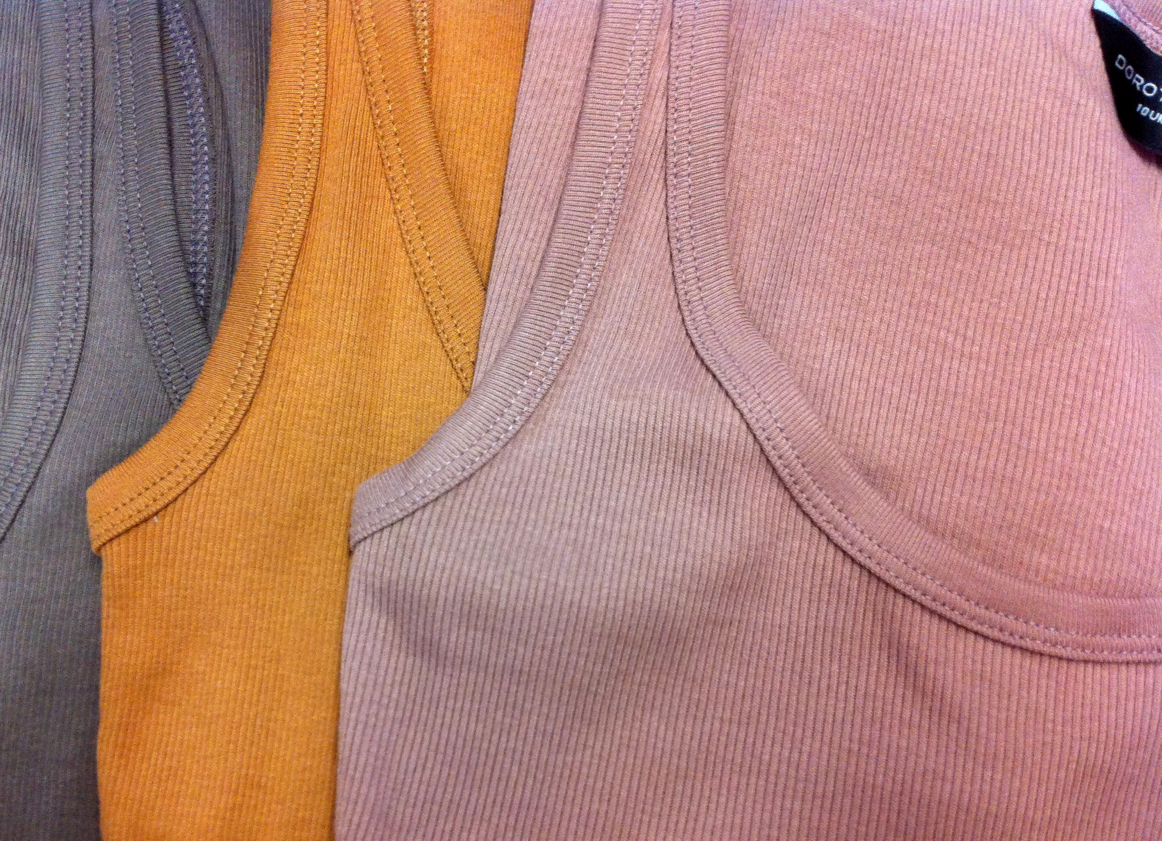 Three vest tops from Dorothy Perkins