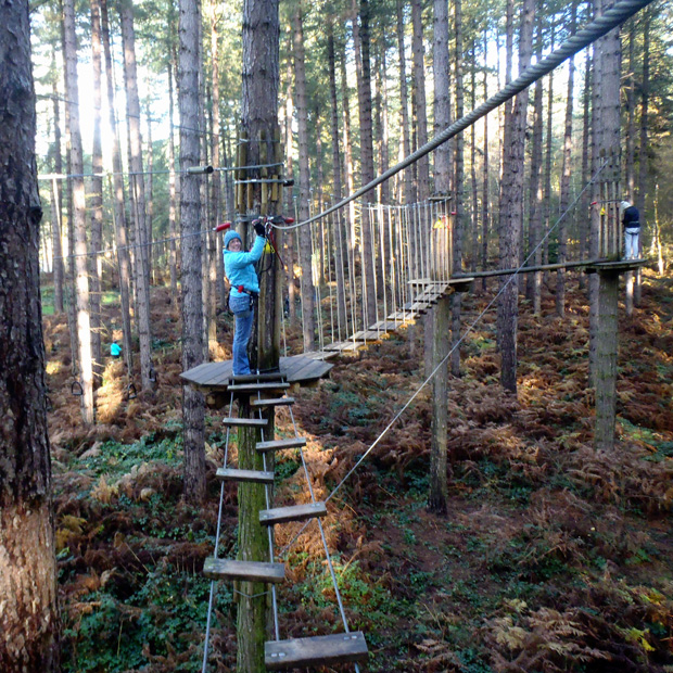 Go Ape, Sherwood Pines