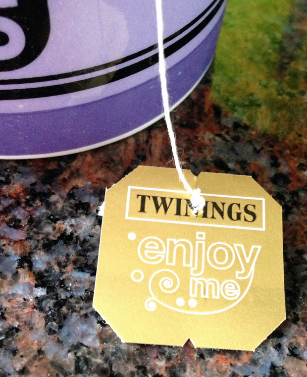 Twinings Summer Fruits Black Tea
