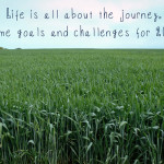 Goals and Challenges for 2015
