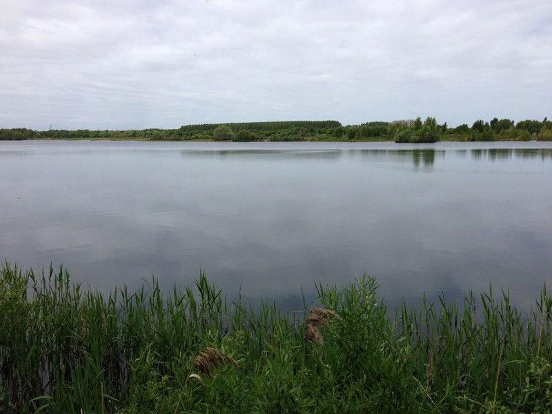 Walking in Lincolnshire - Whisby Nature Park