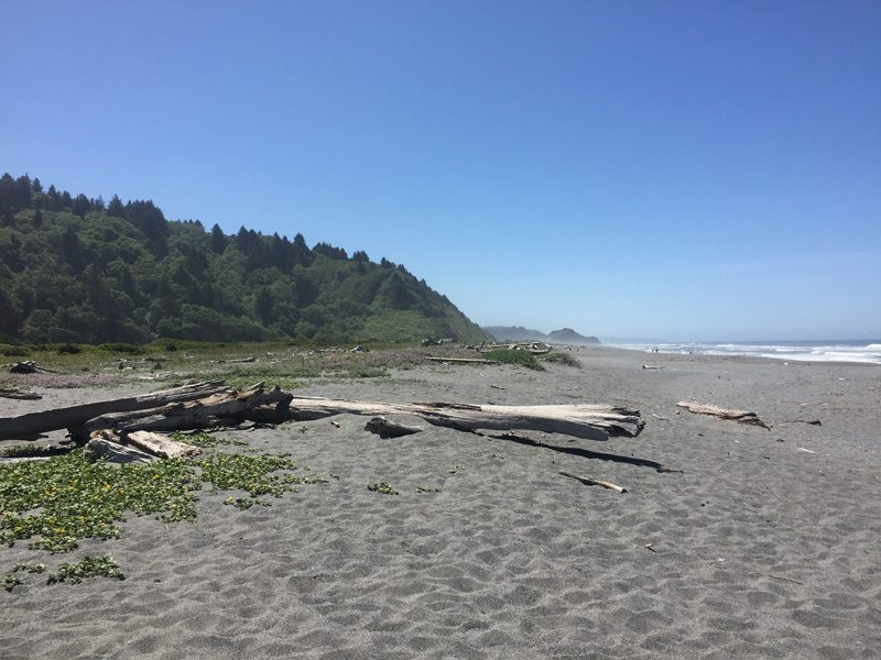 Zartusacan - Beach