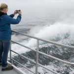 Whale Watching - Ghostek Atmoic Waterproof iPhone Case Review