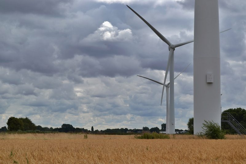 Farm Walk at Vine House Farm, Lincolnshire - Wind Turbines