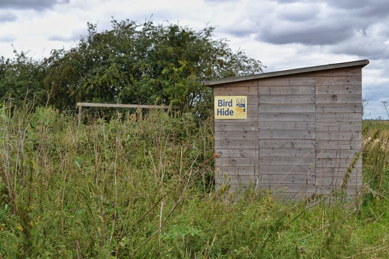 Farm Walk at Vine House Farm, Lincolnshire - Bird Hide