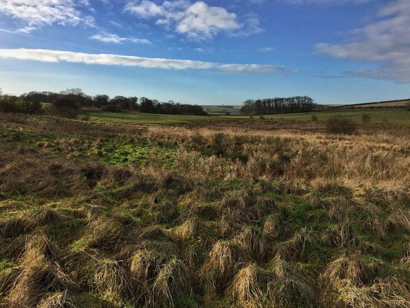 Walking in the Lincolnshire Wolds - Binbrook Loop - Splodz Blogz