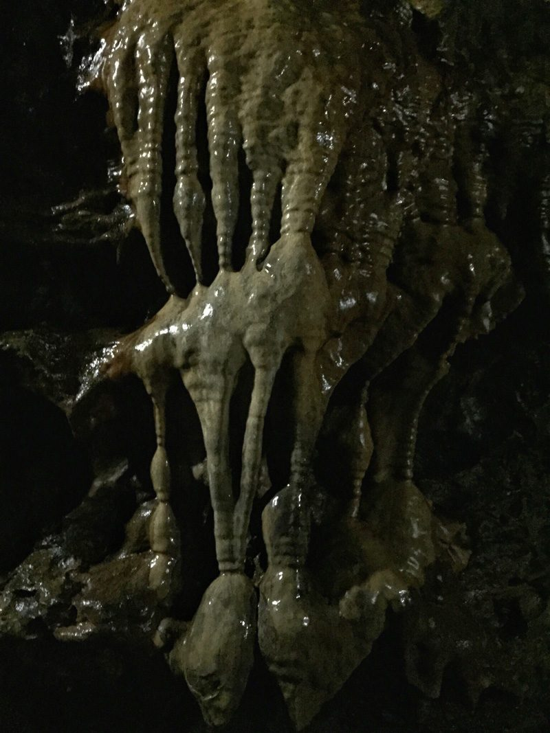 Splodz Blogz | White Scar Cave Witches Fingers